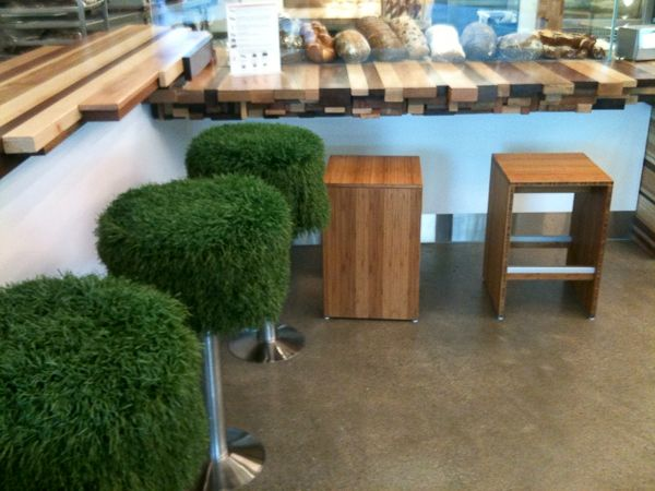 19 Best Images About Turf Grass On Pinterest Toilets