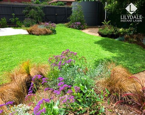 January - 2017 - Monthly Home Owners Competition Winner - Lilydale Instant Lawn Care | Love your lawn | Great grass | Lily & Dale | Follow us | Garden Tips & Advice | Contact us | Lawn Solutions Australia Lawn Supplier | Instant Turf |Sir Walter Buffalo DNA Certified | Lawn Solutions Australia | Online Store | Local Pick up & Delivery | Lawn Care | Turf Farm | Melbourne | Victoria | Garden | Grass