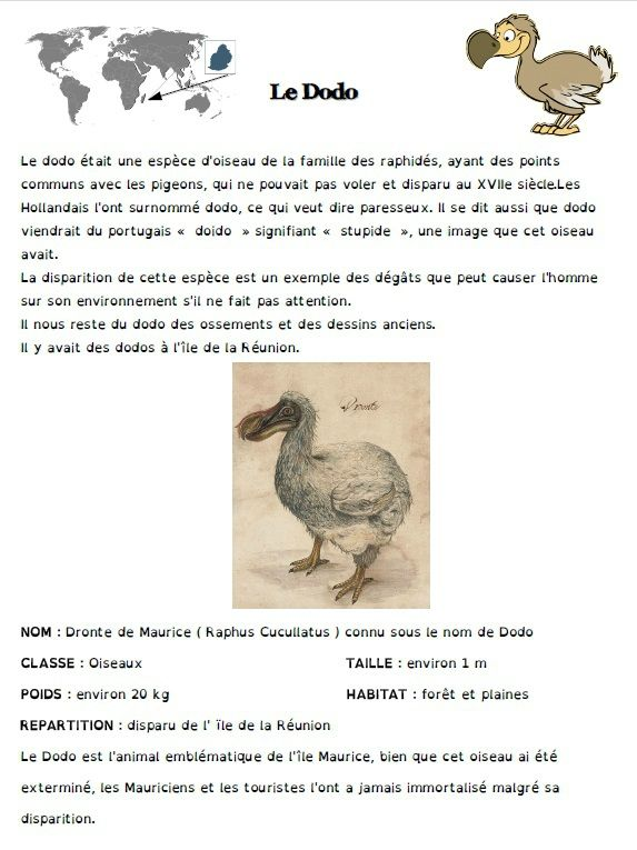 Fiches documentaires atelier lecture