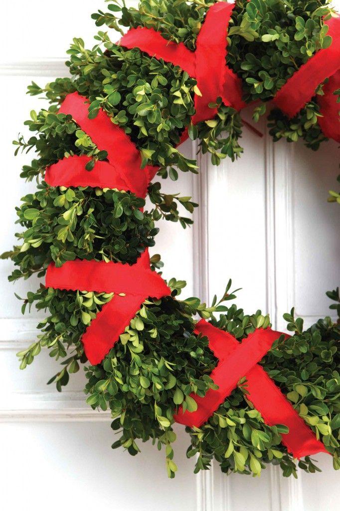 classic / red ribbon & boxwood wreath
