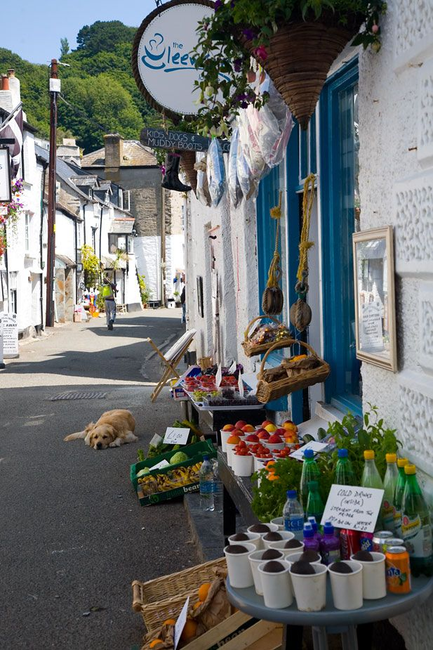 Lansallos Street - Polperro (by chris_I / cornwalls.co.uk)  Looking down Lansallos Street in Polperro. I can't recall the name of the shop on the right but apparently 'kids, dogs and muddy boots are welcome'.  The dog in the photo definitely lives here as I have seen a photo of Lansallos Street on another site, from another time and the dog is lying here!