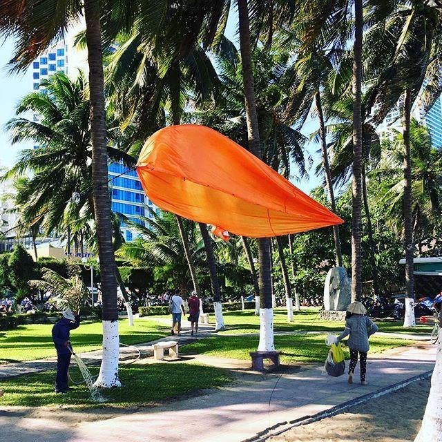 Wenn die Reisehängematte zu leicht wird... #hängematte #hammock #wind #palms #beach