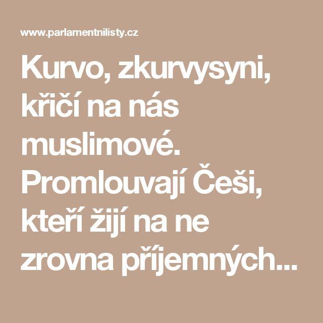 Kurvo, zkurvysyni, křičí na nás muslimové. Promlouvají Češi, kteří žijí na ne zrovna příjemných místech západní Evropy | ParlamentniListy.cz – politika ze všech stran