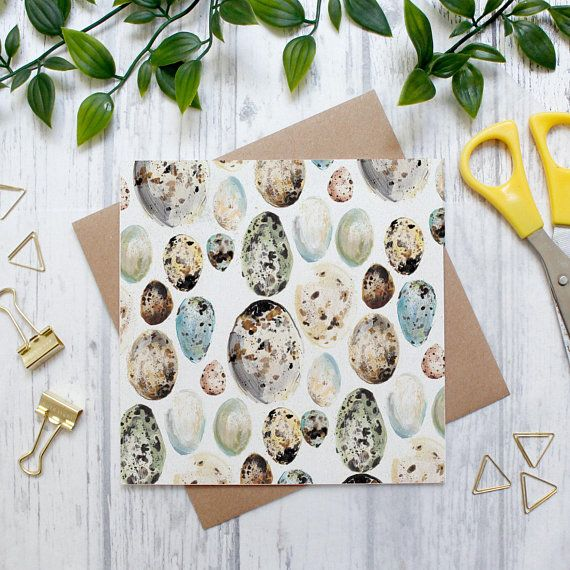 Bird Egg Pattern Card Blank Card Greeting Card Cards Nature