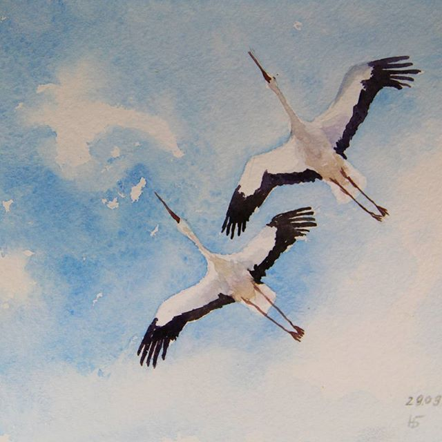 Wings #watercolor#blue#sky#wings#bird#crane#blue#couple#акварель#птицы#журавли#голубой#крылья