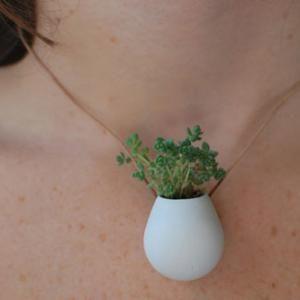 Plantas para despoluir o ar de casa