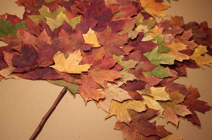 NÁVOD: List z listů - Na velký kus papírové lepenky jsme postupně nalepili suché podzimní listy do tvaru listu. ( DIY, Hobby, Crafts, Homemade, Handmade, Creative, Ideas)