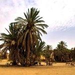Boko Haram attacks creating major hunger crisis in Lake Chad