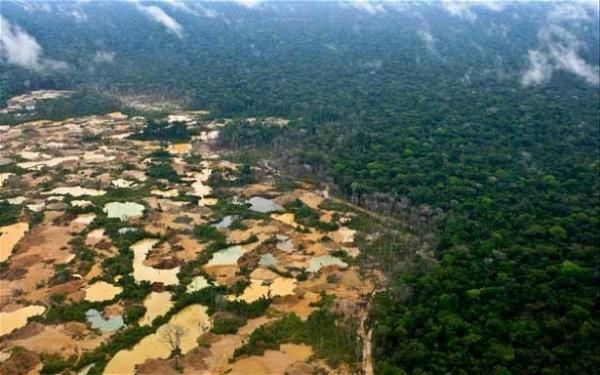 And as the price of gold stays high, the healthy Amazon disappears ... an ounce and an acre at a time with hugeareas turned into deserts and wastelands. Without the rainforests our ecosystems  will decline rapidly - we will be in deep trouble, collectively. THIS IS MADNESS!