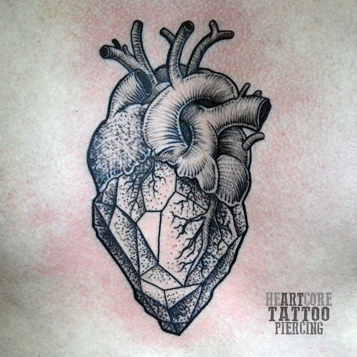 My anatomical, geometrical heart tattoo, made a few days ago. Tattoo artist @sickvik submitted by http://hopeisnoteverything.tumblr.com