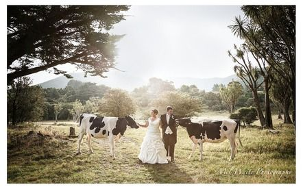 Martinborough Village - Weddings in Martinborough - We have it all here - come see