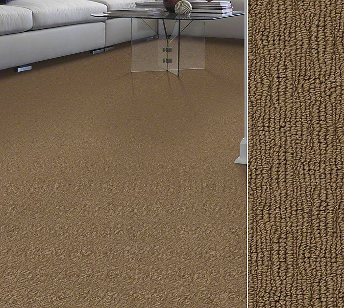 Shaw Anso Nylon In A Basketweave Visual Style Caraban Color Acorn Living Room Carpetshaw