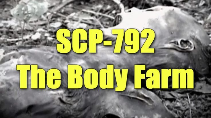 17 Best images about Forensic Research~The Body Farm on ... Human Decomposition Time Lapse