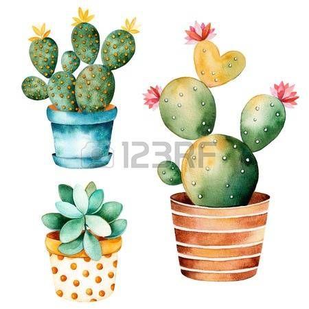 cactus plant: Acuarela pintado a mano planta de cactus y plantas suculentas en pot.Watercolor clipart, maceta individuo aislado en blanco background.Perfect para su proyecto, cubierta, papel pintado, modelo, papel de regalo, boda