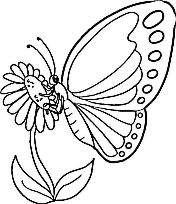 Monarch Butterfly Coloring Page From Category Select 27252 Printable Crafts Of Cartoons Nature Animals Bible And Many More