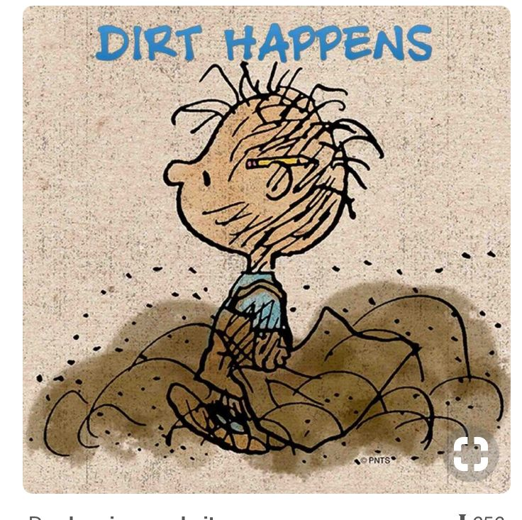 Love the Peanuts Gang!!....Pig Pen is the epitome of being a boy...they just naturally attract lots of dirt!!...