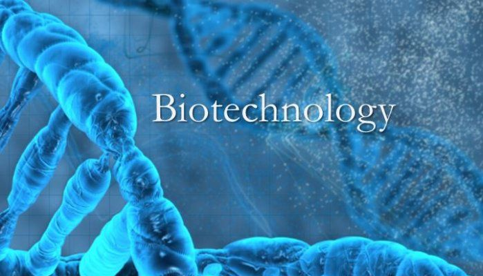 #Biotechnology #Assignment #writing #Services  Australia As this is an overly complicated subject, a student might encounter many challenges while completing assignment writing task of biotechnology. It may be lack of skills, insufficient time, unawareness of the university guidelines, etc.,