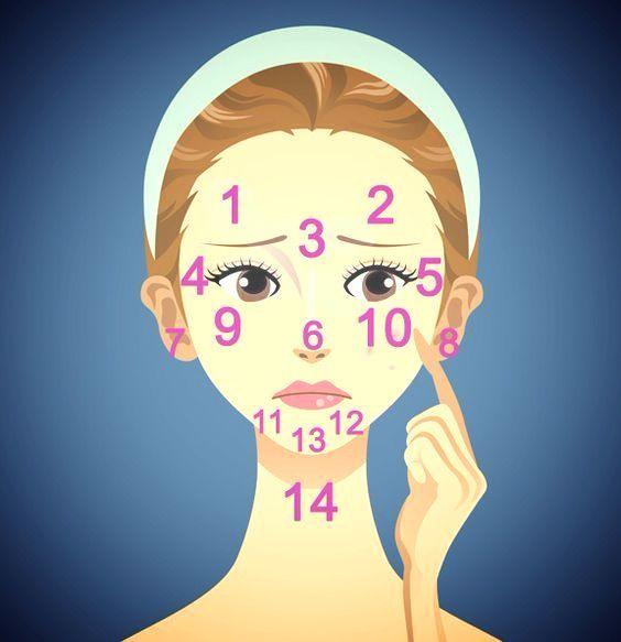 Yüzümüzdeki sivilceler bir ömür boyunca -bazen canımızı sıkan- misafirlerimizdir. Bir gelir bir giderler. Sivilceler bazen sadece ciltteki yağlanma veya kirin dışa vurumu da olsa özellikle belli periodların dışında çıkan sivilcelerin nedenleri sadece cildiniz olmayabilir. Yüzümüzdeki bölgelere göre vücudumuzda muhtemelen hangi sıkıntılar yaşanıyor olabilir?  1-2 : Sindirim Sistemi 3 : Karaciğer 4-5 : Böbrekler 6 : Kalp 7-8 : Böbrekler 9-10 : Solunum sistemi 11-12: Hormonlar 13 : Mide 14…