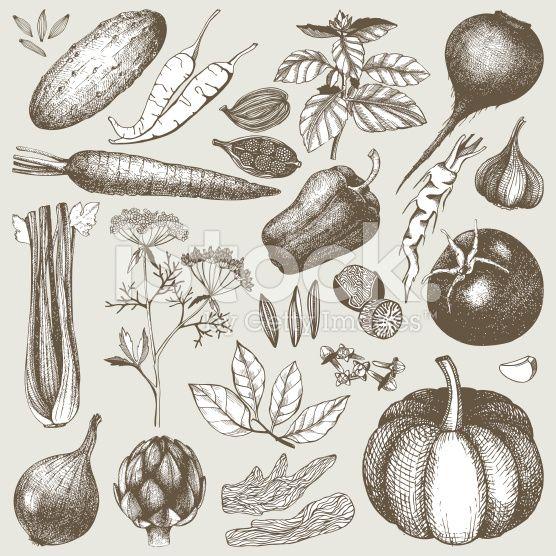 Vintage healthy food illustration. royalty-free stock vector art