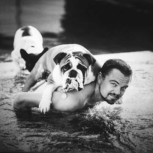 Leonardo DiCaprio I bet those are slobbery dogs but they're real cute
