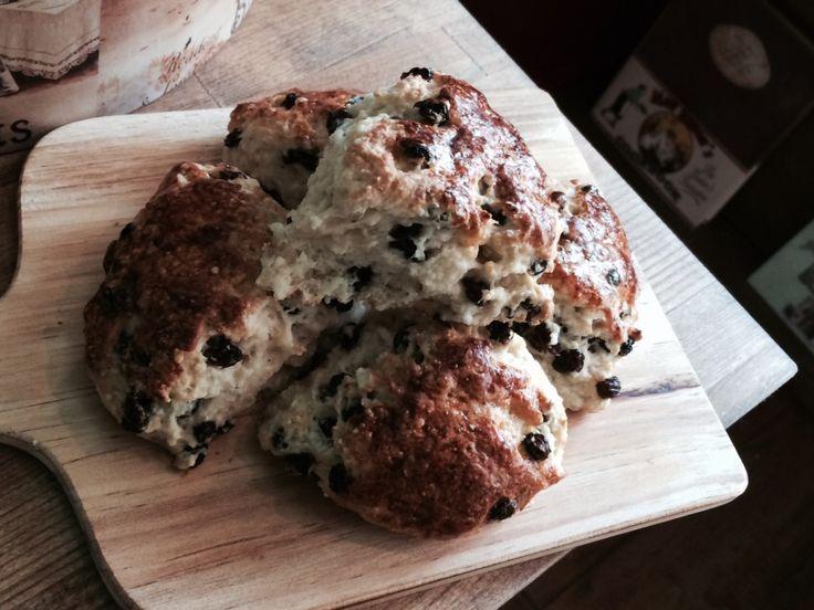 Baker's Scones パン屋さんのスコーン イギリスのパン屋さんで売っているタイプのスコーン。モチっとした食感です。150yen