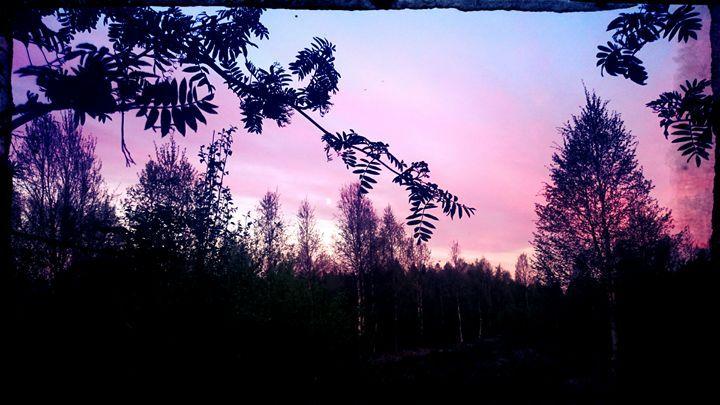 Summer Night in Finland - TiJa Art