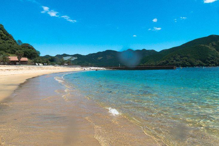 Mikiura beach, Owase, Mie-ken - Mergulho No Japão - Coral Diving