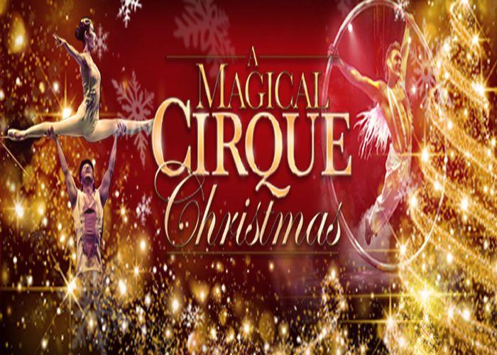 Magical Cirque Christmas 2020 Pin on LIFE IN COLORADO 2020!