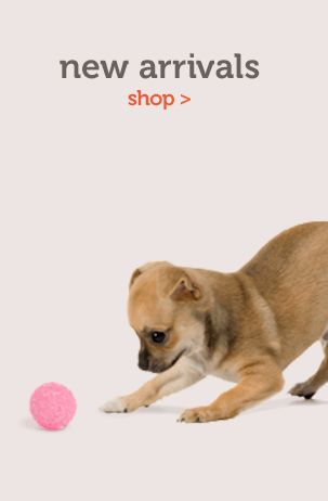 Wag.com Rated # 4 in the Top 5 Online Pet Stores Article Posted Here --> http://www.sheknows.com/pets-and-animals/articles/965251/top-5-online-pet-stores-for-pet-supplies