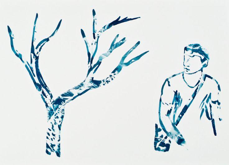 Conversations with Trees, Lloyd Godman,