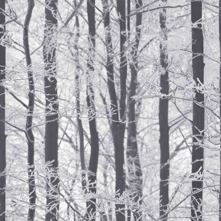"Frosted Wood Silver 33.5' x 22"" Floral Wallpaper"