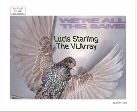 Another single from the Dublin based Irish Singer Song Writer and Music Producer know as LUCIS STARLING The VLArray. (This POP song is similar to the music of  Capital Cities and Daft Punk)