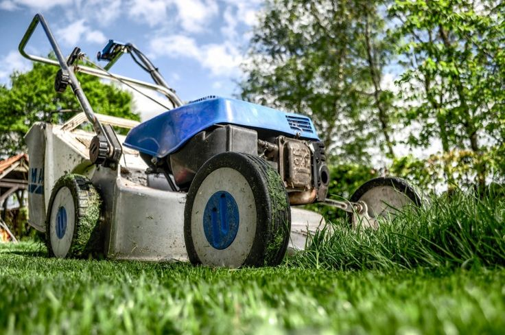 Grass Recycling: The best technique to manage your lawn care: coolabahturf