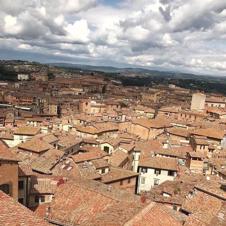 Siena jest przepiękna  Skradła moje serce mocniej niż zatłoczona głośna i gwarna Florencja. #psc #paniswojegoczasu #wlochy #włochy #italy #wakacje #holidays #siena #toskania