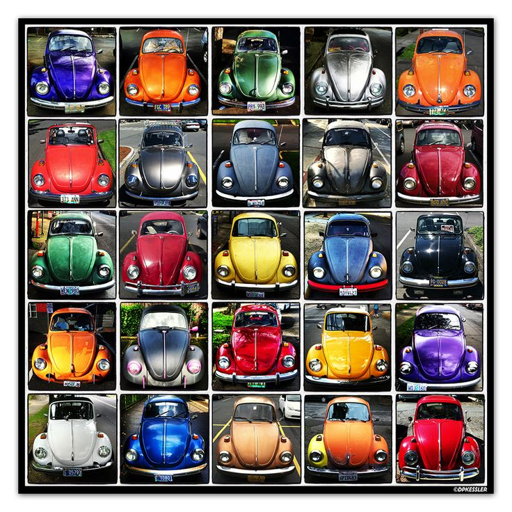 Volkswagen beetle typology. Photography by David Kessler.