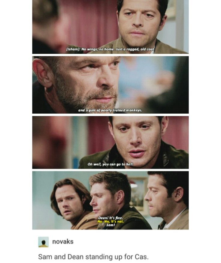 supernatural tumblr post cas castiel sam winchester dean winchester team free will season 12