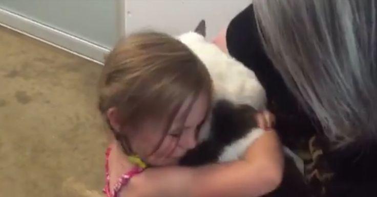 Les émouvantes retrouvailles d'une fillette avec son chat disparu depuis trois ans  Sa perte avait laissé un vide immense dans la vie de sa famille. Mais après trois ans d'errance, le félin a récemment pu retrouver les siens grâce à la SPCA de Namaimo (près de Vancouver).