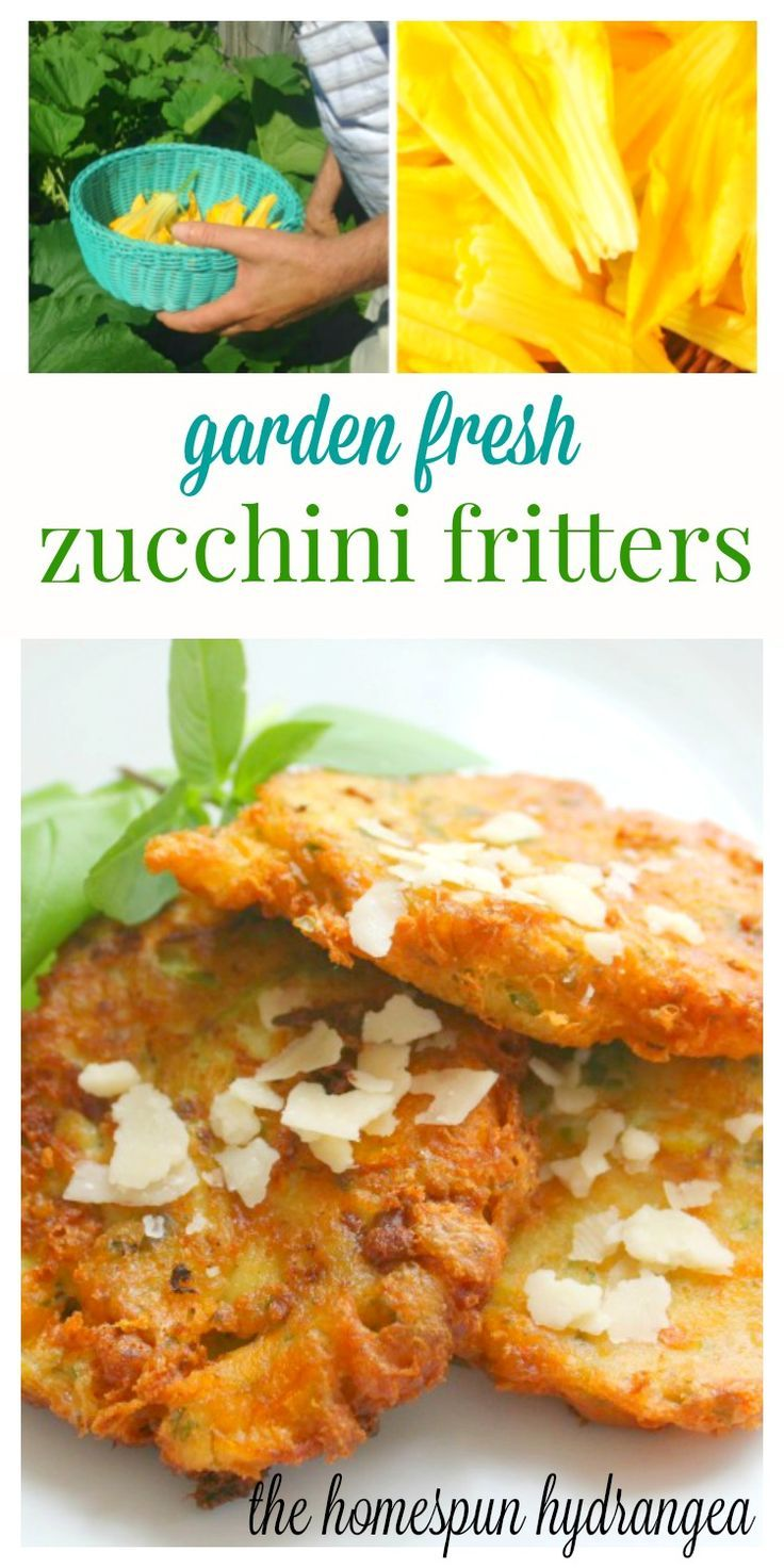 These Zucchini Blossom Fritters Are So Easy To Make And A Great Way To Take  Advantage