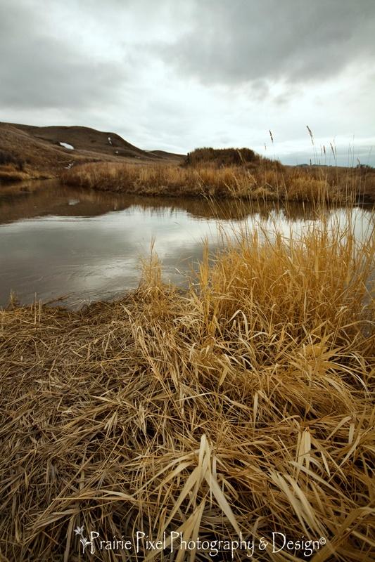 Frenchman River at Grasslands National Park, Saskatchewan.