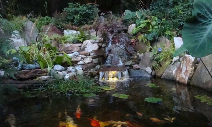 10 best water features images on pinterest water On ultimate koi pond design