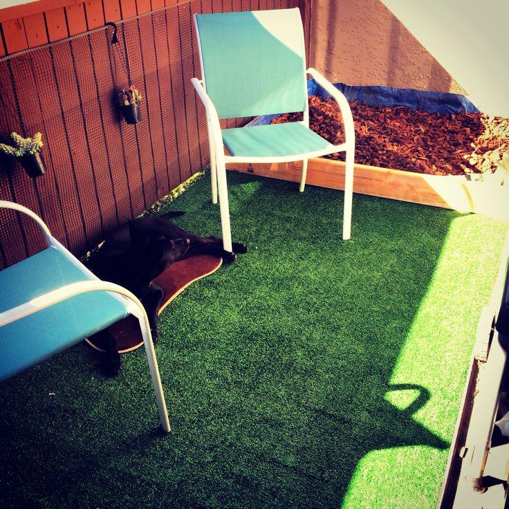Decor Ideas Dog: Design By Cory&allison Apartment Balcony Dog Friendly