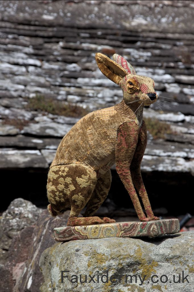 hare,fauxidermy,taxidermy,sitting,full body,brecon-beacons,