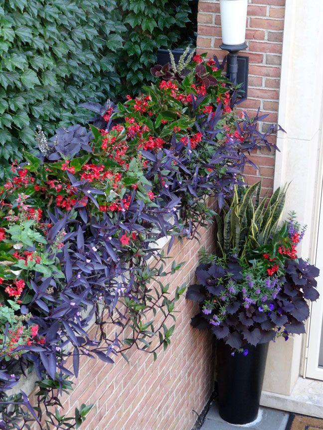 1701 Best Garden Container Gardening Images On Pinterest Pots