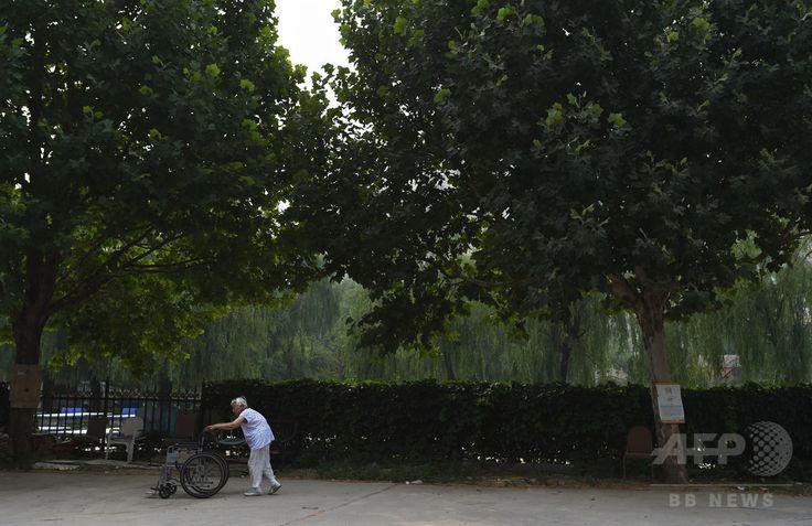 中国・北京(Beijing)市郊外にある老人介護施設の敷地内でエクササイズに励む入居者(2014年7月1日撮影)。(c)AFP/Greg BAKER ▼7Aug2014AFP|高齢化進む中国の未成熟な介護市場 http://www.afpbb.com/articles/-/3022515 #Beijing