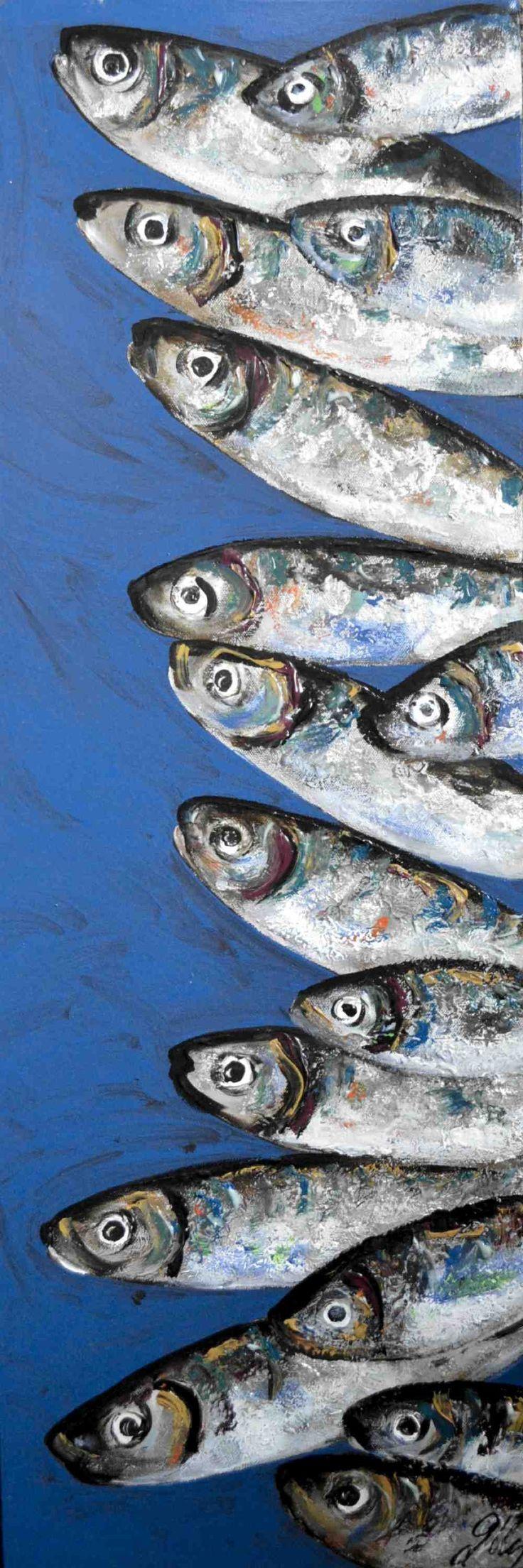 Fish aquarium in jeddah - Sardines En Ligne Plus