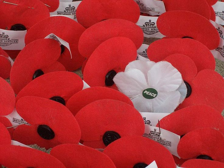 despite pinning from an Australian site, these poppies have NZ RSA tags on them, a taste of home