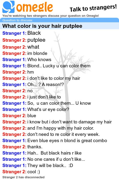 Omegle chat feb 28 2016 8