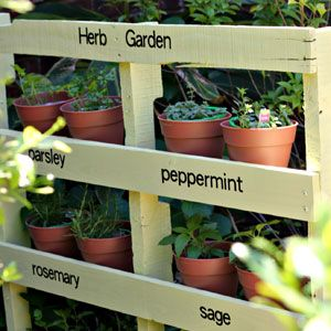 Pinterest Inspiration: Apartment Gardening Ideas - In the Garden - Mother Earth Living