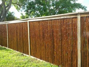 Bamboo Fencing Care and Maintenance - they say seal bamboo with a deck sealant like TWP 300. (Alternatively, Sikkens or Behr Premium if any deck sealant will do.)