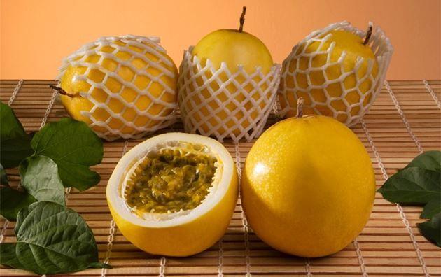 O maracujá é originário da América Tropical. Ele pertence a família Passifloráceas, ele é chamado de Flor paixão, devido ao sabor e sua cor.